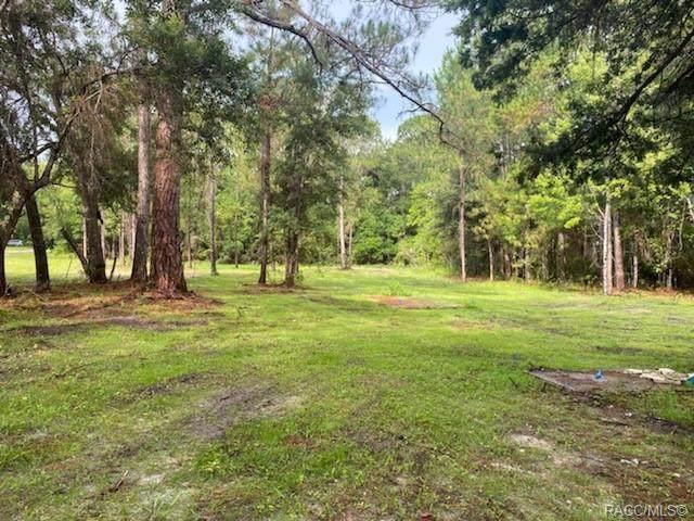 7755 W Mistflower Place, Homosassa, FL 34448 (MLS #803874) :: Plantation Realty Inc.