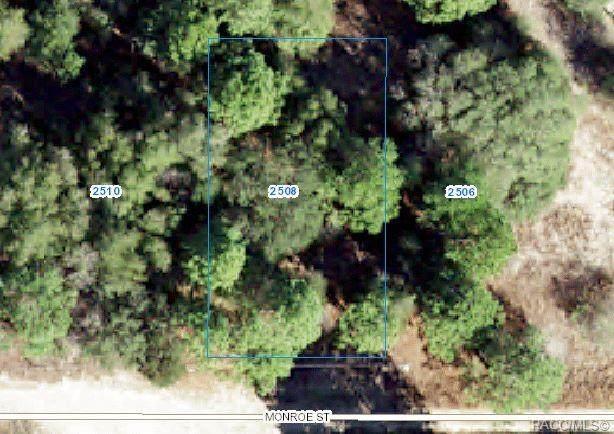2508 Monroe Street, Inverness, FL 34453 (MLS #803889) :: Plantation Realty Inc.