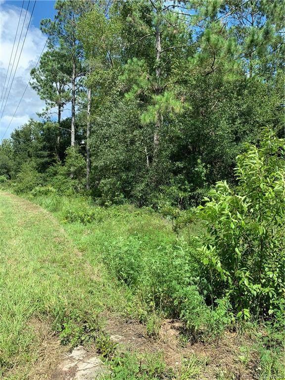 9296 W Dunnellon Road, Crystal River, FL 34428 (MLS #803918) :: Plantation Realty Inc.