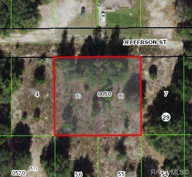 2511 Jefferson Street, Inverness, FL 34453 (MLS #803935) :: Plantation Realty Inc.