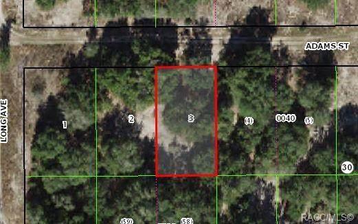 2605 Adams Street W, Inverness, FL 34453 (MLS #803939) :: Plantation Realty Inc.