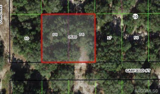 2606 Garfield Street, Inverness, FL 34453 (MLS #803940) :: Plantation Realty Inc.