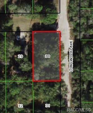 2203 Garfield Street, Inverness, FL 34453 (MLS #803941) :: Plantation Realty Inc.
