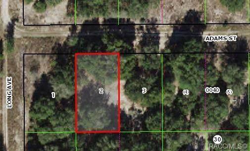 2607 Adams Street, Inverness, FL 34453 (MLS #804030) :: Plantation Realty Inc.