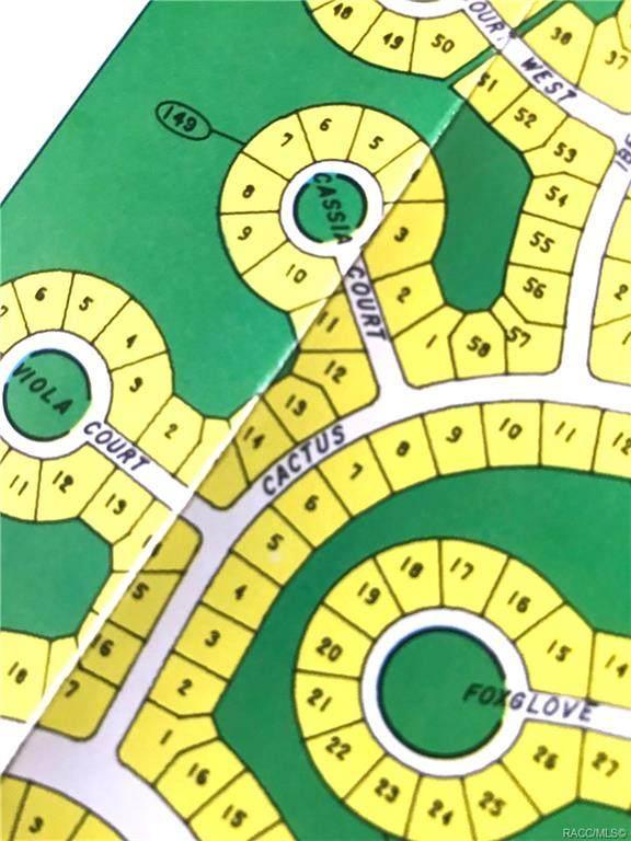 13 Cactus Street, Homosassa, FL 34446 (MLS #804079) :: Plantation Realty Inc.