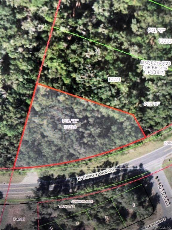 3555 N Turkey Oak Dr. Parcel A, Crystal River, FL 34428 (MLS #804117) :: Plantation Realty Inc.