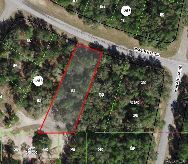 9402 N Athenia Drive, Citrus Springs, FL 34434 (MLS #804156) :: Plantation Realty Inc.