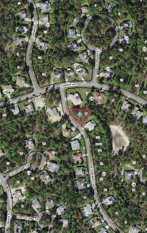 5 Speceberry Circle, Homosassa, FL 34446 (MLS #804159) :: Pristine Properties