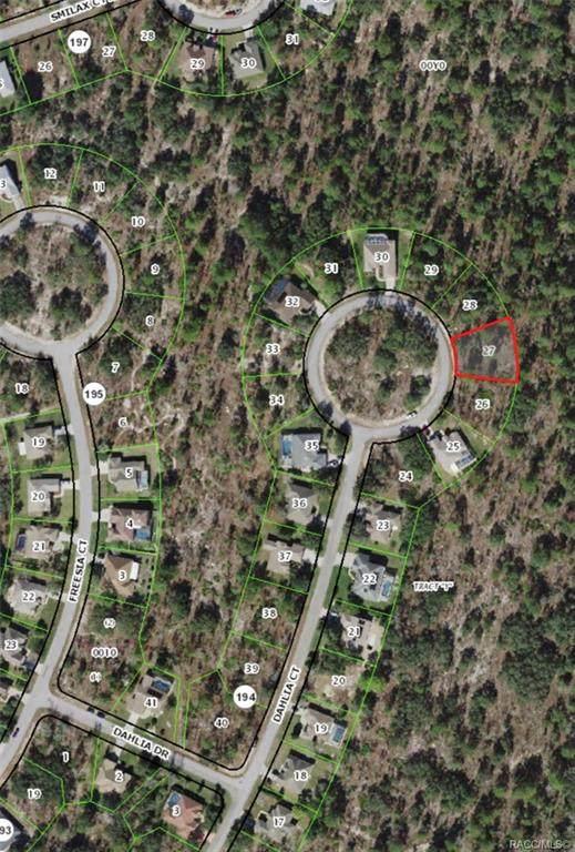 27 Dahlia Court N, Homosassa, FL 34446 (MLS #804160) :: Pristine Properties