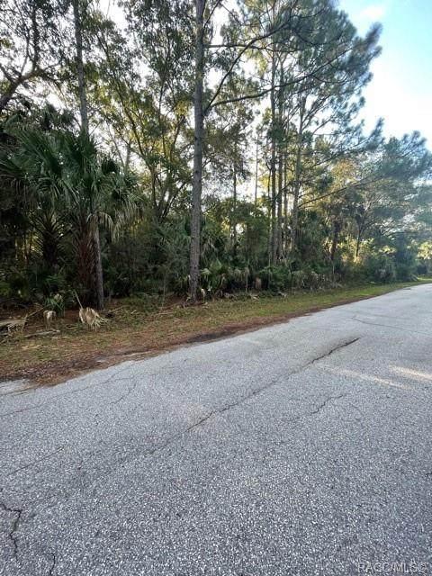 6375 N Diamond Terrace, Crystal River, FL 34428 (MLS #804555) :: Plantation Realty Inc.