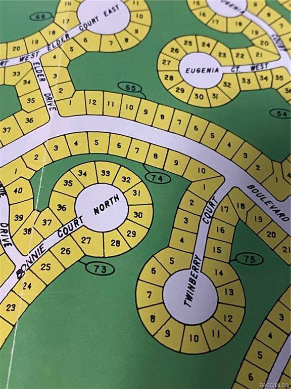 53 Corkwood Boulevard, Homosassa, FL 34446 (MLS #804618) :: Plantation Realty Inc.