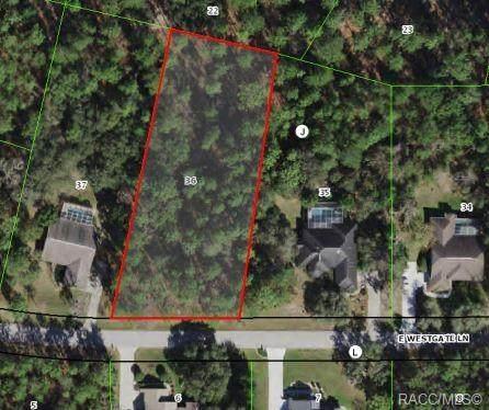 1611 E Westgate Lane, Hernando, FL 34442 (MLS #804699) :: Plantation Realty Inc.