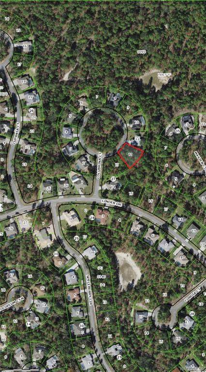 5 Colubrina Court, Homosassa, FL 34446 (MLS #804700) :: Plantation Realty Inc.