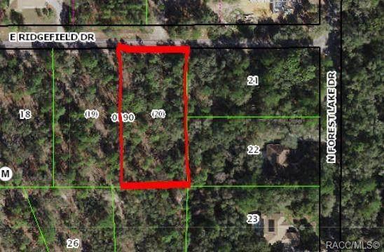1834 E Ridgefield Drive, Hernando, FL 34442 (MLS #804863) :: Plantation Realty Inc.
