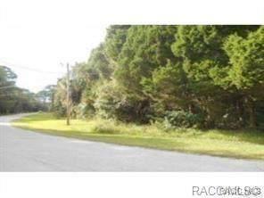 0 67, Yankeetown, FL 34498 (MLS #805003) :: Plantation Realty Inc.