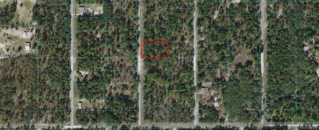 Lot 22 Fig Tree Lane - Photo 1