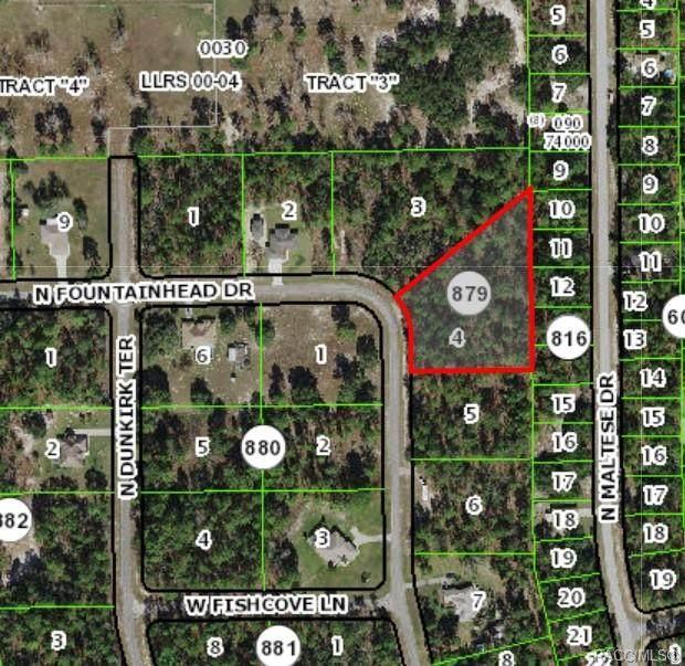 7637 N Fountainhead Drive, Citrus Springs, FL 34433 (MLS #805365) :: Plantation Realty Inc.