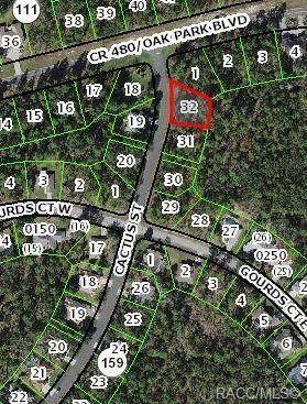 68 Cactus Street, Homosassa, FL 34446 (MLS #805731) :: Plantation Realty Inc.