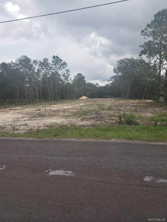 5615 S Gray Oak Terrace, Lecanto, FL 34461 (MLS #805860) :: Plantation Realty Inc.