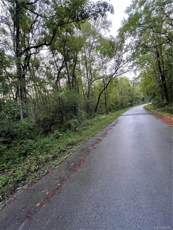 10584 S Le Baron Drive, Homosassa, FL 34448 (MLS #805905) :: Plantation Realty Inc.