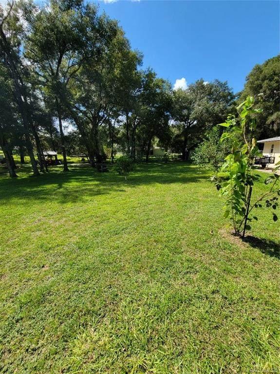 3522 S Apopka Avenue, Inverness, FL 34452 (MLS #806062) :: Dalton Wade Real Estate Group