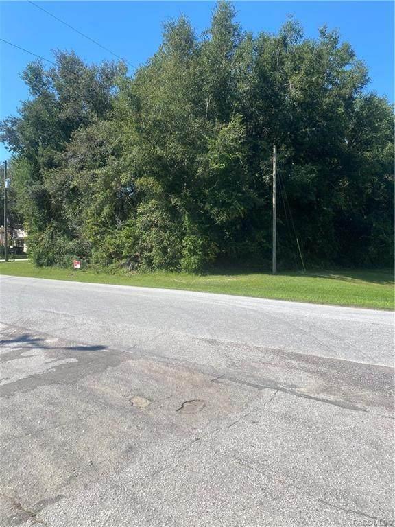 8246 N Golfview Drive, Citrus Springs, FL 34434 (MLS #806103) :: Plantation Realty Inc.