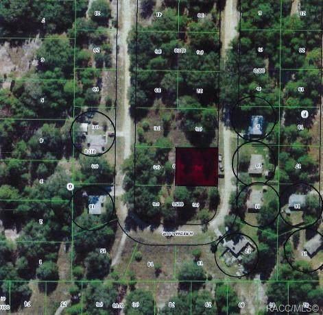 8724 N Reina Loop, Crystal River, FL 34428 (MLS #806324) :: Plantation Realty Inc.