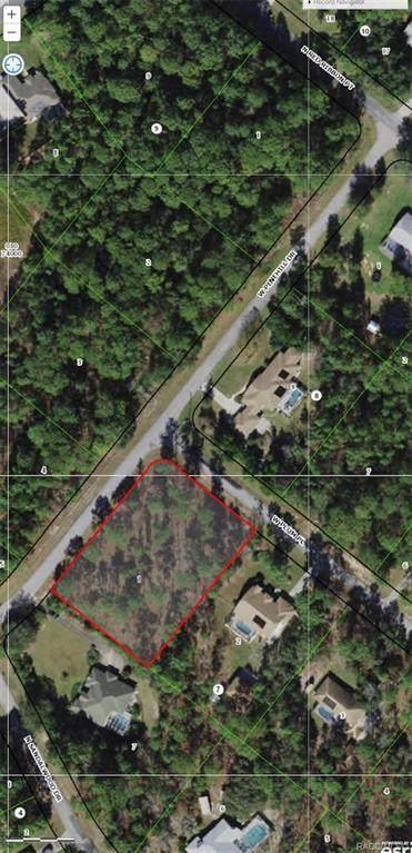 1386 W Plum Place, Beverly Hills, FL 34465 (MLS #806390) :: Plantation Realty Inc.