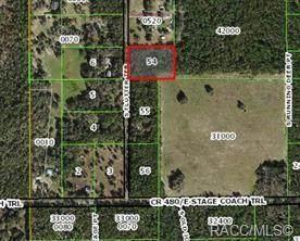 10969 S Flutter Terrace, Inverness, FL 34452 (MLS #806427) :: Plantation Realty Inc.