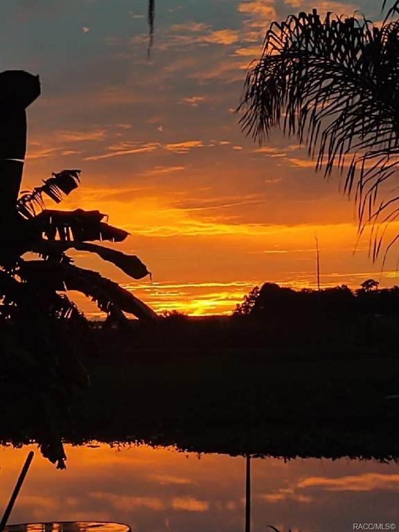 7965 W Riverbend Road, Crystal River, FL 34428 (MLS #806456) :: Plantation Realty Inc.
