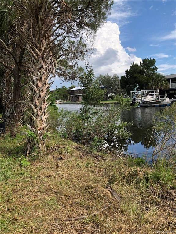 12096 W Gulf Breeze Court, Crystal River, FL 34429 (MLS #806476) :: Plantation Realty Inc.