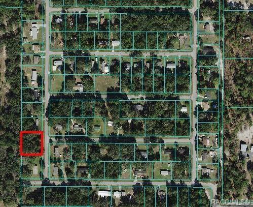 Lots 7-12 SW 112th Avenue, Dunnellon, FL 34432 (MLS #806586) :: Plantation Realty Inc.