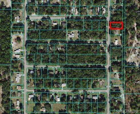 Lots 64-66 SW 110th Court, Dunnellon, FL 34432 (MLS #806590) :: Plantation Realty Inc.