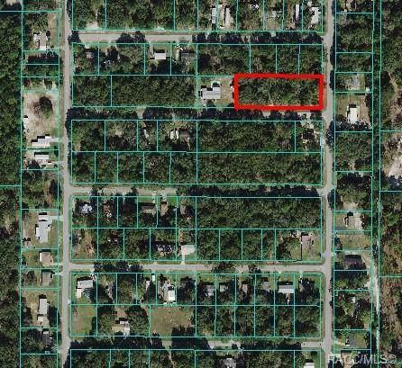 Lots 39-51 SW 107th Street, Dunnellon, FL 34432 (MLS #806595) :: Plantation Realty Inc.