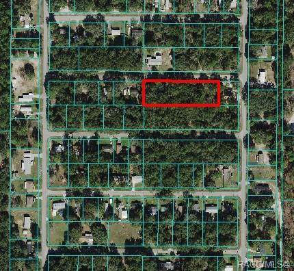 Lots 20-34 SW 107th Street, Other, FL 34432 (MLS #806598) :: Plantation Realty Inc.