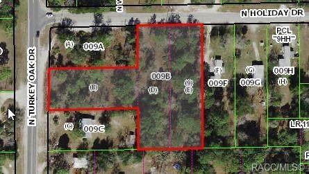 3093 N Turkey Oak Drive, Crystal River, FL 34428 (MLS #806614) :: Plantation Realty Inc.