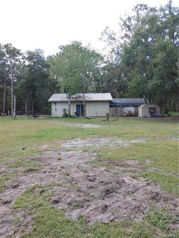 10843 Telford, New Port Richey, FL 34654 (MLS #806631) :: Plantation Realty Inc.