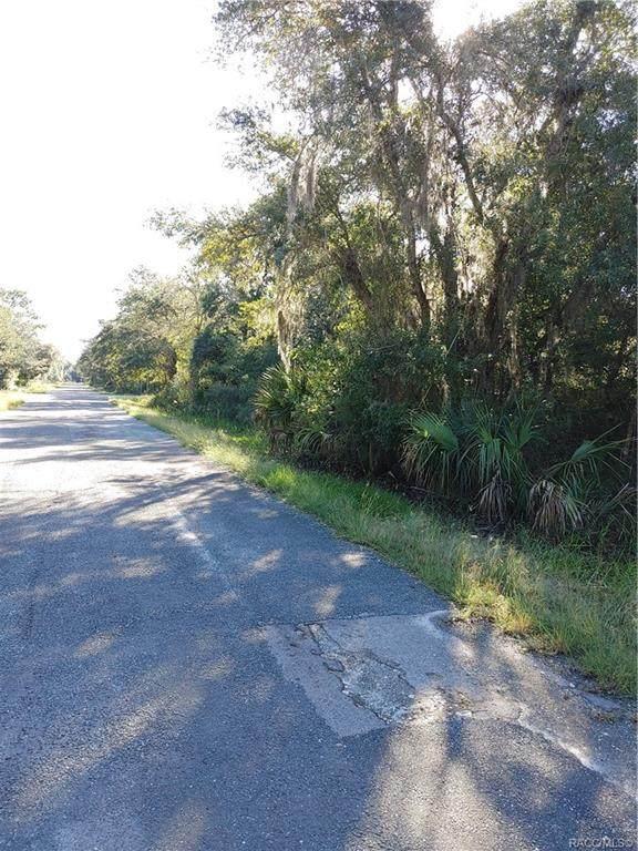 12098 W Fig Tree Lane, Crystal River, FL 34428 (MLS #806643) :: Plantation Realty Inc.