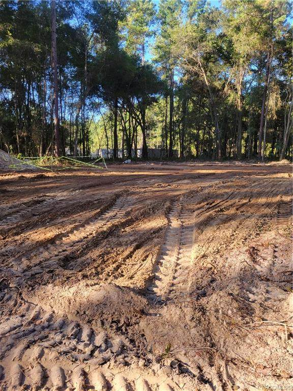 442 E Elgrove Drive, Citrus Springs, FL 34434 (MLS #806712) :: Plantation Realty Inc.