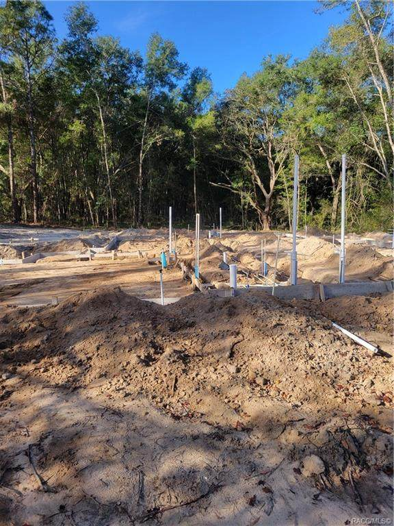 10097 N Wayland Avenue, Citrus Springs, FL 34434 (MLS #806715) :: Plantation Realty Inc.