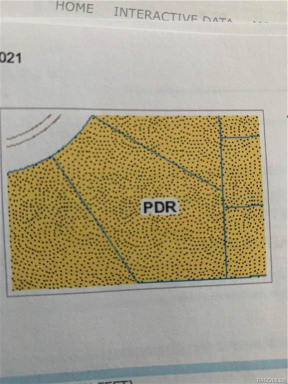 1476 W Diamond Drive, Citrus Springs, FL 34434 (MLS #806731) :: Plantation Realty Inc.