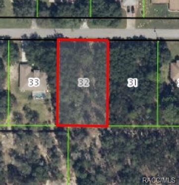 2196 E Celina Street, Inverness, FL 34453 (MLS #762234) :: Plantation Realty Inc.