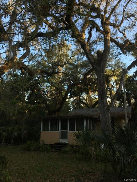 7018 E Munoz Court, Hernando, FL 34442 (MLS #770405) :: Plantation Realty Inc.