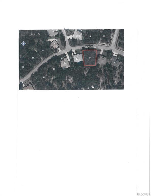 23 Saintpaulia Street, Homosassa, FL 34446 (MLS #770482) :: Plantation Realty Inc.