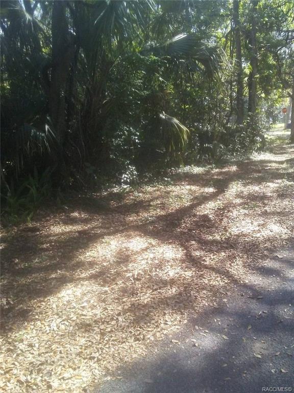 0 Inglis Ave, Inglis, FL 34449 (MLS #781518) :: Plantation Realty Inc.
