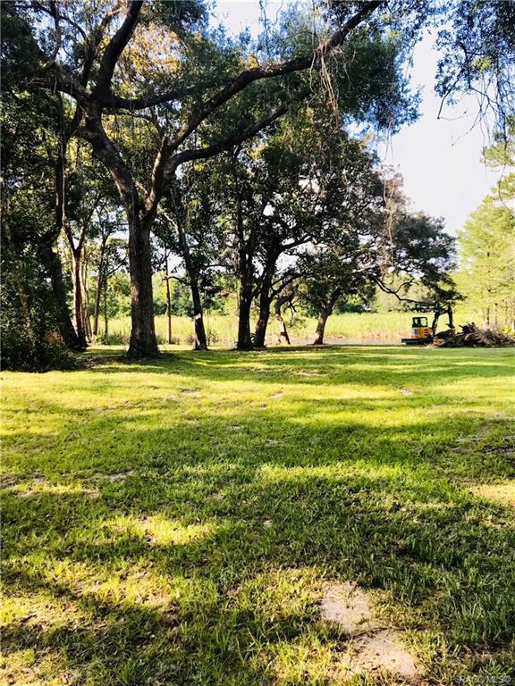 8721 E Greenock Drive, Inverness, FL 34450 (MLS #783017) :: Plantation Realty Inc.