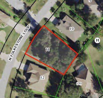 2986 N Folkestone Loop, Hernando, FL 34442 (MLS #786968) :: Plantation Realty Inc.