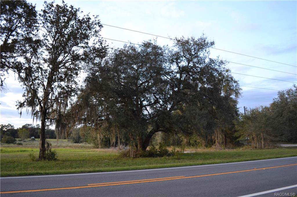 7731 Dunnellon Road - Photo 1