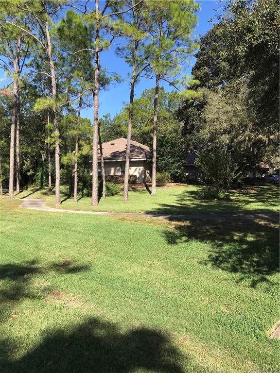 3060 W Plantation Pines Court, Lecanto, FL 34461 (MLS #787218) :: Plantation Realty Inc.