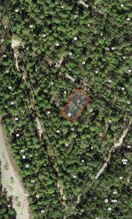 2509 Kirt Street, Inverness, FL 34452 (MLS #787895) :: Plantation Realty Inc.